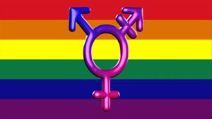 TRANSSEXUALIDADE
